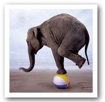 на форекс мы постоянно балансируем между нашими желаниями и возможностями